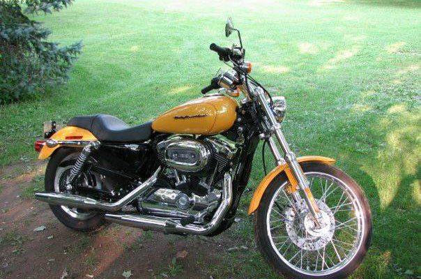 Wasp – Harley Davidson Sportster 1200